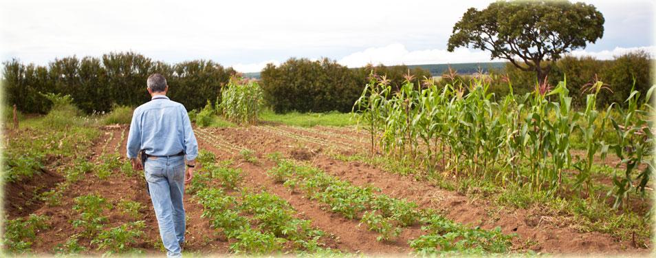 Self Sustaining Farm Units