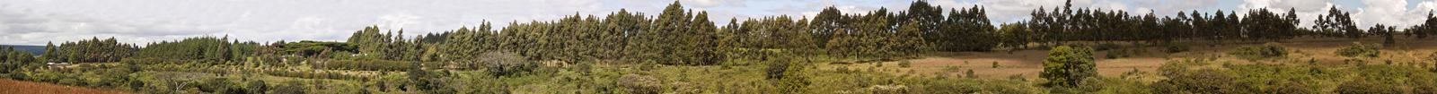 Kibidula Campus Panoramic Picture