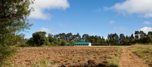 Kibidula Primary School